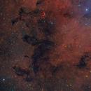 Dark clouds in IC1396,                                Christoph Lichtblau