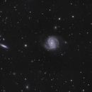 M100 The Blowdryer Galaxy and Friends,                                qcernie