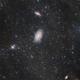 M81-M82 in L-R(Ha)GB,                                Valentin