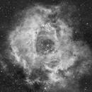 NGC 2244,                                cuicat