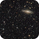Stephan's Quintet + Deer Lick Group,                                Richard Pattie