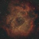 Rosette,                                telespock