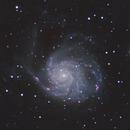 M101 - Pinwheel Galaxy (2x drizzle),                                Adam Cseh