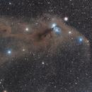 Corona Australis dust cloud,                                Kevin Osborn