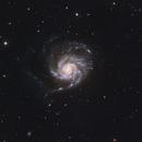 M101,                                Nick Smith