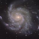 M 101 - Pinwheel Galaxy,                                Robert Schumann