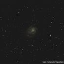 M101 Urbana,                                juanvivo