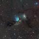 M78 Wide Field,                                Andrew Barton