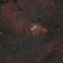 Cone Nebula,                                Steve Siedentop