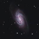 NGC 2903 in LRGB,                                Ron