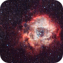 The Rosette Nebula - NGC2237,                                DarkSwede