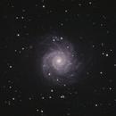 M74 - November 7, 2020,                                Adam Drake