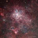 Tarantula Nebula - HORGB Image,                                Eric Coles (coles44)