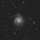M74,                                guillau012