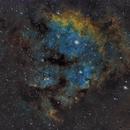NGC7822,                                Stan Smith