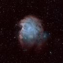 MonkeyHead nebula,                                Jan Monsuur