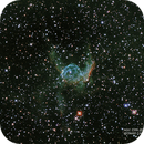 NGC 2359 -- ELMO DI THOR,                                Omar Carlino