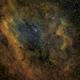 Sh2-119, NGC7000, IC5070 - SHO,                                Nico Carver