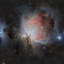 Messier 42,                                Steve Siedentop