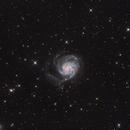 M101 wide field,                                litobrit
