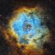 Rosette Nebula in the Hubble Palette,                                  Chuck's Astrophot...