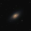 M64 (Black Eye Galaxy),                                Joel Shepherd