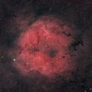 IC1396, false color,                                GeorgeA