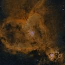 Heart Nebula HHO,                                Greg Watkins