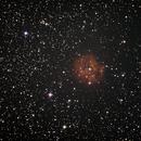 IC 5146,                                Anton