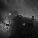 Horsehead Nebula Region [Ha],                                Dean Carr