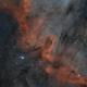 NGC 7000 ( Bi - Color),                                John Leader