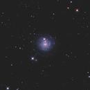 NGC3344 LRGB,                                Christopher Gomez