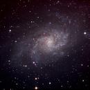 M33,                                Borowy Misiek