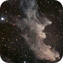 NGC 1909 The Witch Head,                                Jim Lindelien