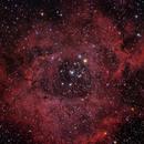 Rosette Nebula,                                Ray Blais