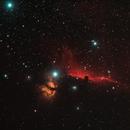 Horsehead & Flame Nebulae (Barnard 33 & NGC2024),                                Derek Ford