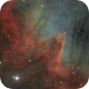 The great wall in NGC 7000 in HSO,                                Christoph Lichtblau