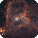 Heart Nebula Bicolor,                                Finn