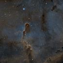 Elephant Trunk Nebula - IC1396,                                Martin Palenik