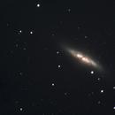 Messier 82,                                Corey Rueckheim