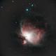 M42, Orion Nebula,                                Bruce Donzanti