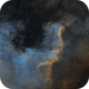 The Cygnus Wall,                                Phillip