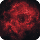 The Rosette Nebula,                                Lyaphine
