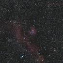 Seagull Nebula IC2177,                                Al_Zinki