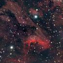 IC5067 (Pelican nebula),                                Kevin Wigell