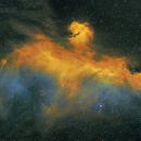 The Seagull Nebula,                                Patrickbarnes