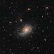 NGC772,                                Jan Sjoerd de Vries