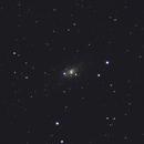 NGC 2403 (Caldwell 7),                                Steven Bellavia