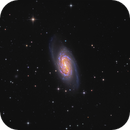 NGC 2903 in Leo,                                sky-watcher (johny)