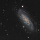NGC 3198,                                Mark